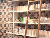 Green bird on book shelf at the wall. Green bird on book shelf on the wall with ladder Royalty Free Stock Photos