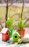Green bird house and Narcissus in pots, shovel and seeds against garden in spring Royalty Free Stock Image