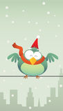 Green bird with santa hat Stock Image