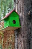 Green birdhouse in nature.  Royalty Free Stock Photo