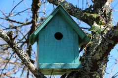 Green birdhouse in a tree Stock Image