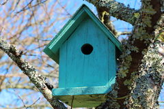 Green birdhouse in a tree Royalty Free Stock Photo
