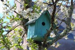 Green birdhouse in a tree Stock Photos