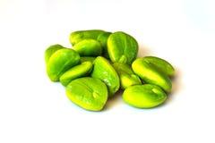 Green bitter beans Stock Photos