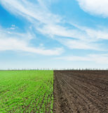Green and black agriculture field and clouds Stock Images