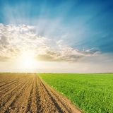 Green and black agriculture fields and sunset. In clouds Royalty Free Stock Photos