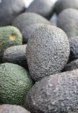 Green and Black Avocado Stock Images
