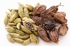 Green and Black Cardamom Royalty Free Stock Image
