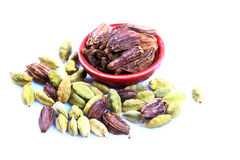 Green and black cardamom Royalty Free Stock Images