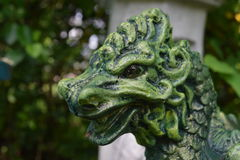 Green and black dragon head close-up. Showing scales and detail stock image