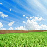 Green and black fields and white clouds in blue sky. Agriculture green and black fields and white clouds in blue sky Royalty Free Stock Photography