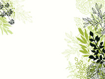 Green and black floral background backdrop Royalty Free Stock Photography