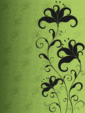 Green and black flower background. Ornate green and black flower background Royalty Free Stock Photo