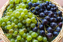 Green and black grapes Royalty Free Stock Photos