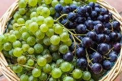 Green and black grapes Royalty Free Stock Photos