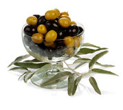 Green and black olives Royalty Free Stock Image