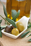 Green and black olives Stock Photography