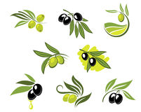 Green and black olives set Royalty Free Stock Images