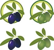 Green and black olives. Vector Icon Set Royalty Free Stock Images