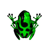 Green and Black Poison Dart Frog. 3D render of a green and black poison dart frog royalty free illustration