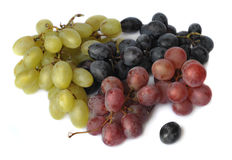 Green,black and red grape Royalty Free Stock Photo