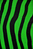 Green and black stripes Stock Images