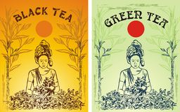 Green and black tea label Stock Images
