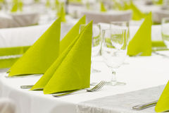 Green and black wedding Royalty Free Stock Images