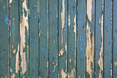 Green bladdered stable doors of a farm Royalty Free Stock Image