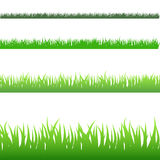Green Blades of Grass Stock Images