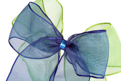 Green and blue bow Stock Images
