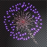 Green and blue coloured firework isolated on transparent background. Vector illustration Stock Image