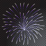Green and blue coloured firework isolated on transparent background. Vector illustration Stock Photos