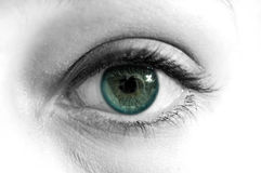 Green Blue Eye Macro B&W Royalty Free Stock Photo