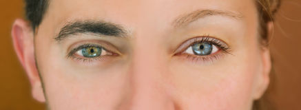 Green - blue eyes. Stock Images
