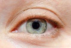 Green-blue human, woman eye close up Royalty Free Stock Image