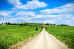 Tuscan Country Road royalty free stock image