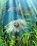 Green and Blue Mermaid Peering through Seaweed Royalty Free Stock Images
