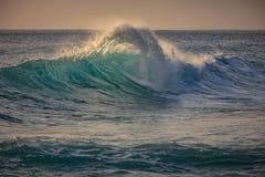 Blue ocean shorebreak wave side view. Green Blue Ocean Wave with big splashing lip lit with orange sunlight at sunset time Royalty Free Stock Image