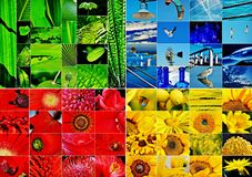 Green blue red yellow collage. Collage made up of a green blue red and yellow collage Stock Photography