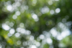 Green and blue summer bokeh. For background Stock Images