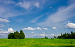 Green-blue summer landscape. Summer landscape whit clouds and green grass Royalty Free Stock Image