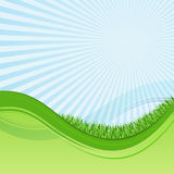 Green and blue wavy background. Abstract green and blue wavy background with grass and sunburst Stock Photography