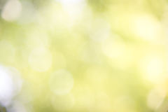 Green blur. Aa bstract background Royalty Free Stock Photo