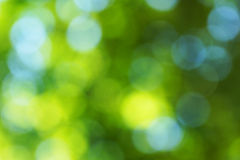 Green Blur Leaves Background stock images