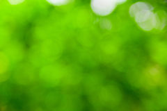 Green blur Stock Images