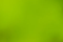 Green blurred background Stock Image