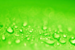 Green blurred Stock Photo