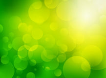 Green blurred bio background Stock Images