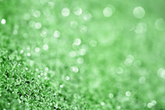 Green blurry background Stock Photo